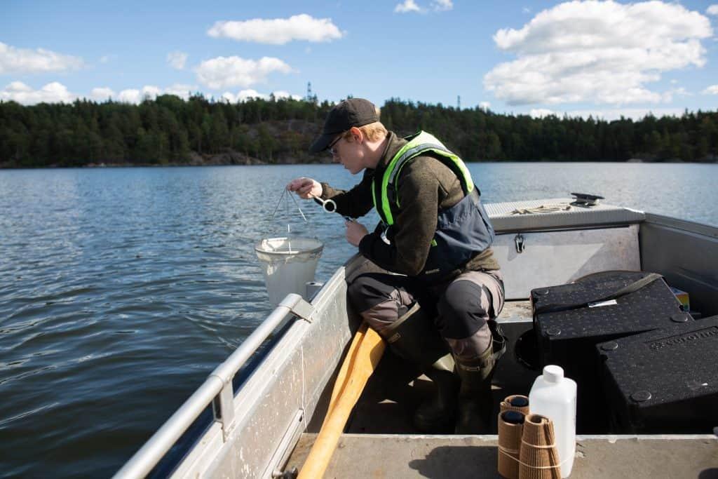 Ny undersökning om Växtplankton