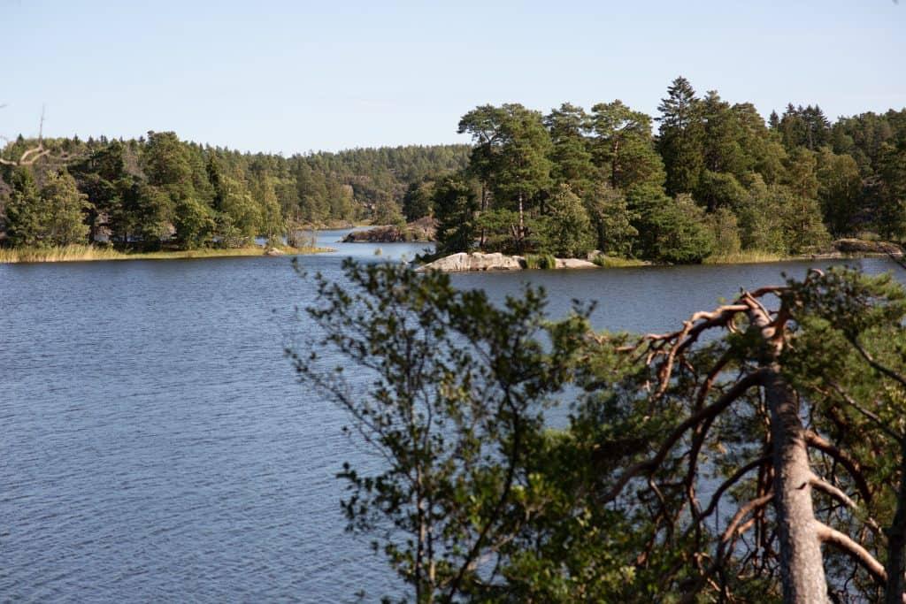 Albysjön