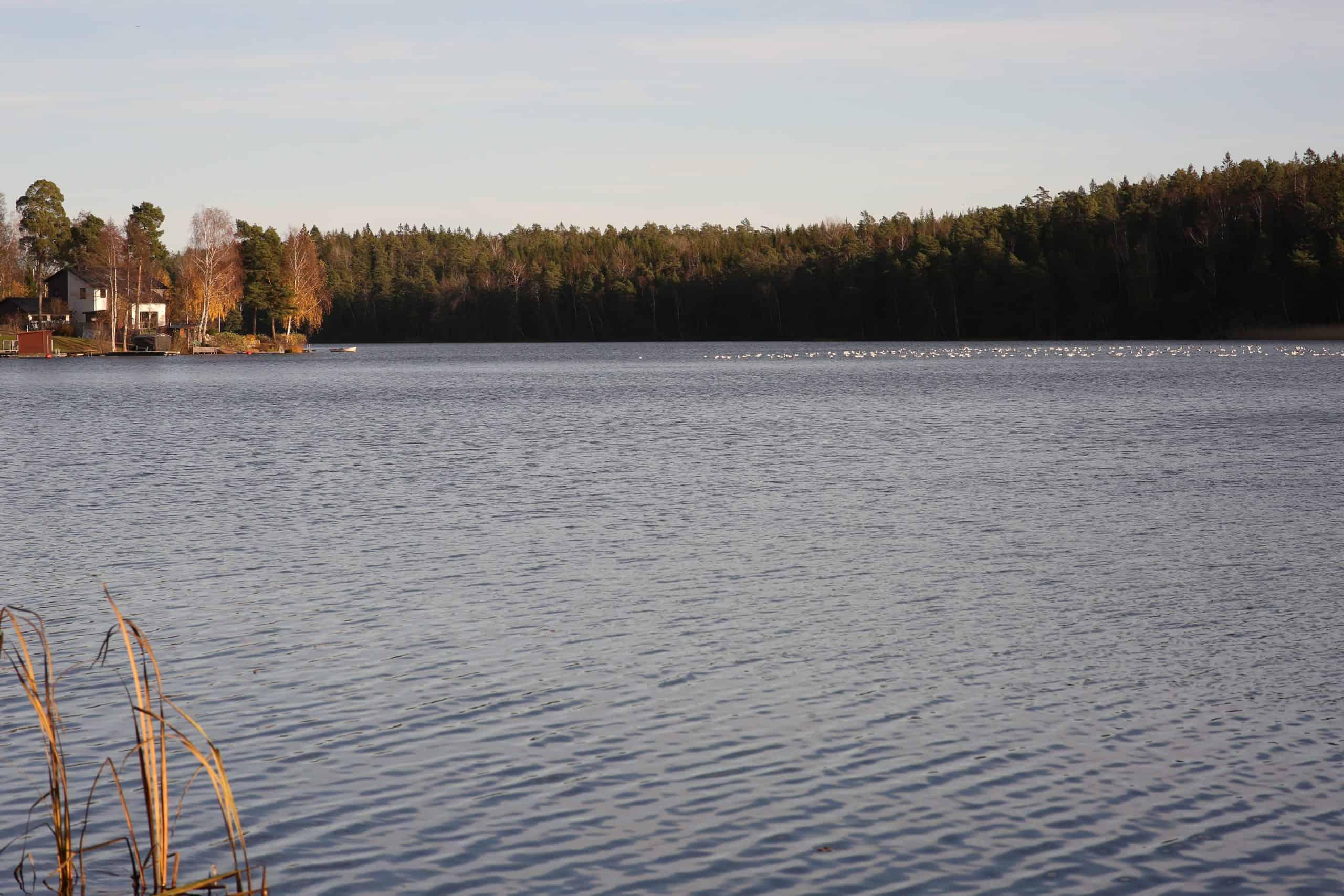 Kvarnsjön-Gladö