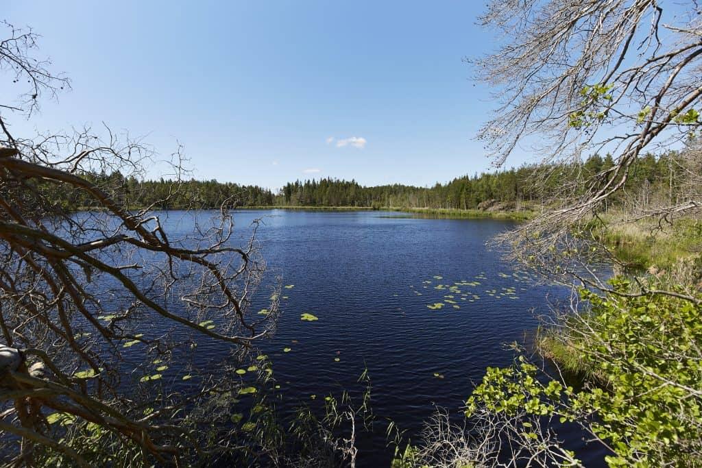 Kärrsjön