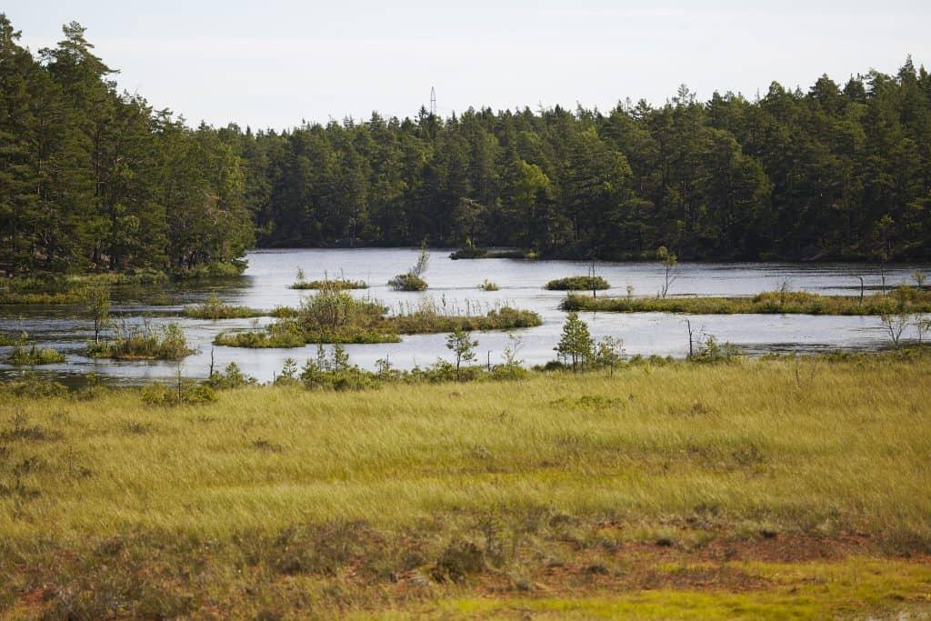 Lissmasjön