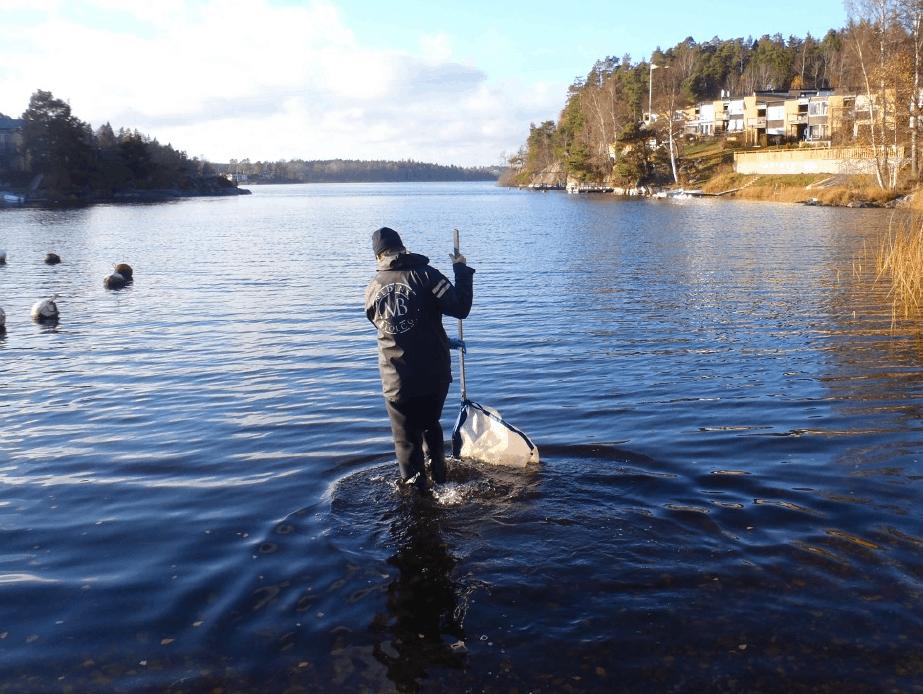 Bottenfauna i Stockholms stad 2013