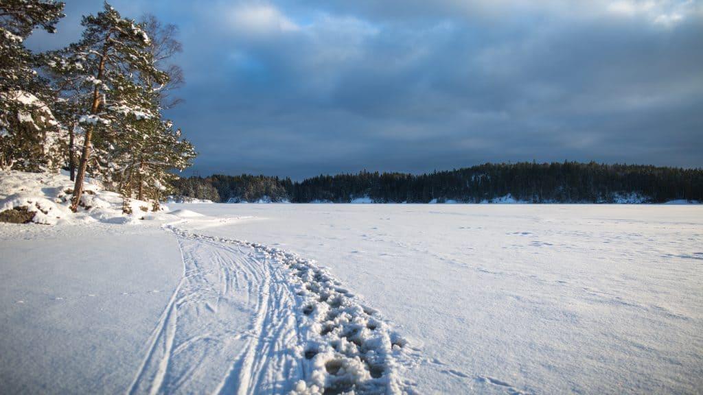 Extrastämma Tyresåns VVF 2021